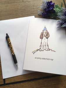 Springer spaniel birthday card, greetings card