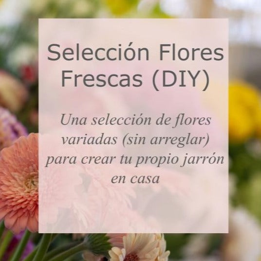 Selección de flores (DIY)/ Flower Selection (DIY)