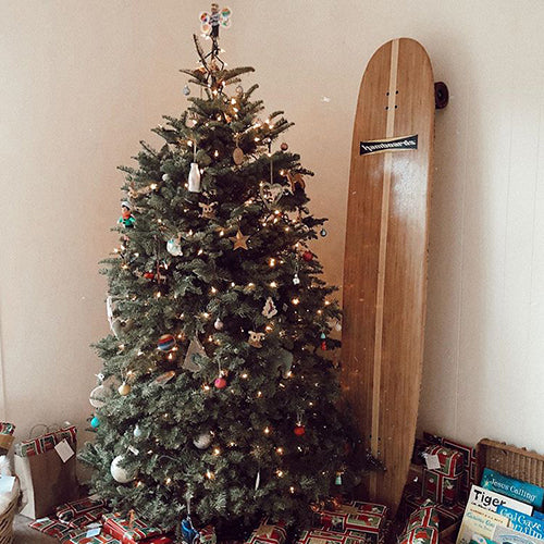 Getting Your Hamboard by Christmas 2016