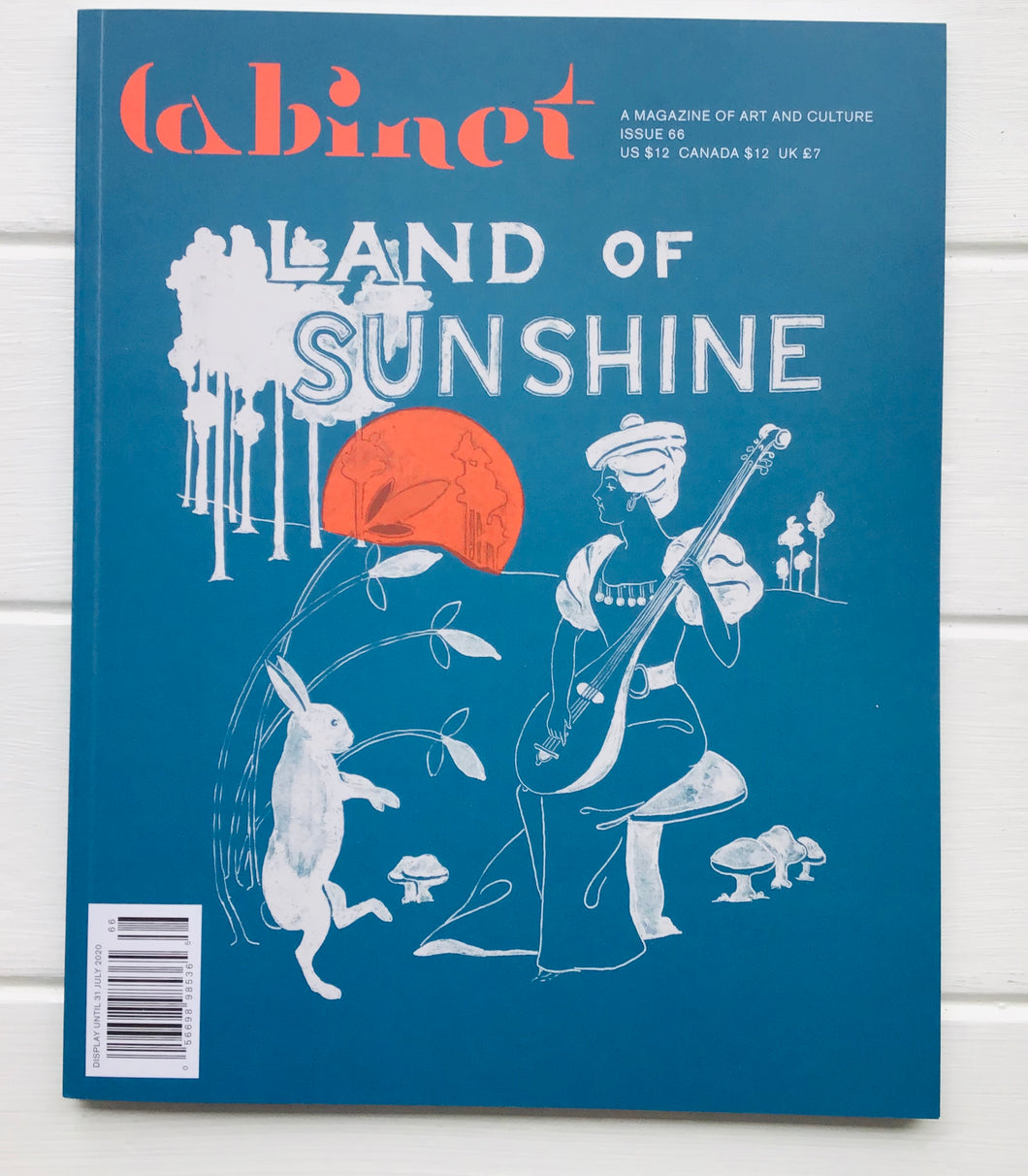 Cabinet - Issue 66