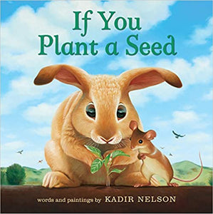 If You Plant A Seed Board Book  620