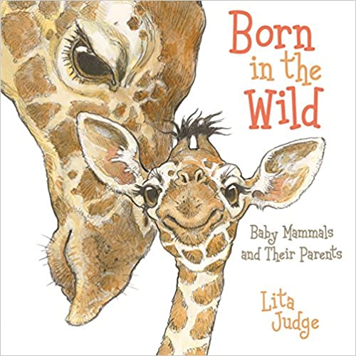 Born in the Wild: Baby Animals and Their Parents Board Book 819