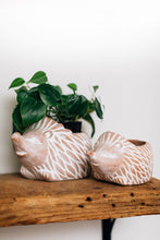 Load image into Gallery viewer, Terracotta Hedgehog Planter