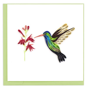 Quilled Broad-billed Hummingbird Card