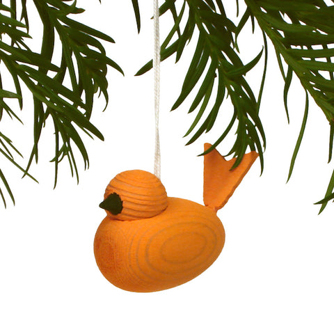 Bird hanging orange