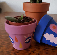 Mini Cacti Pot Pink