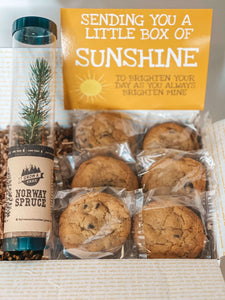 Grow your Sunshine Box