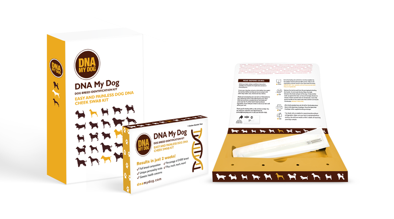 DNA MY Dog - Canine Breed Identification Test Kit (Dog DNA)