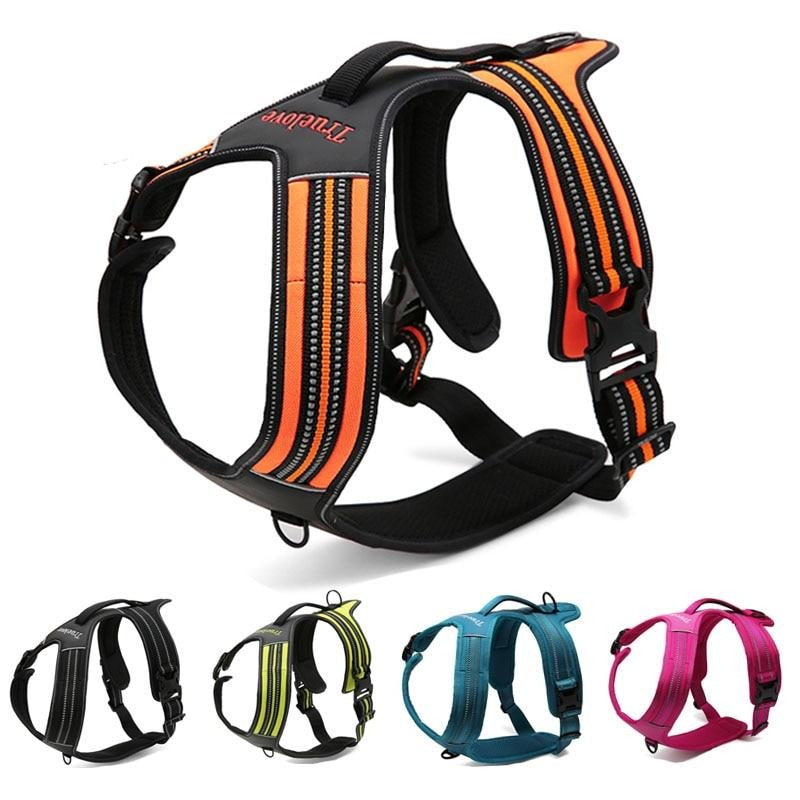 Sport Harness, Collar, Harness, Sport, Collars, Harnesses & Leashes, HappyDog, dogs
