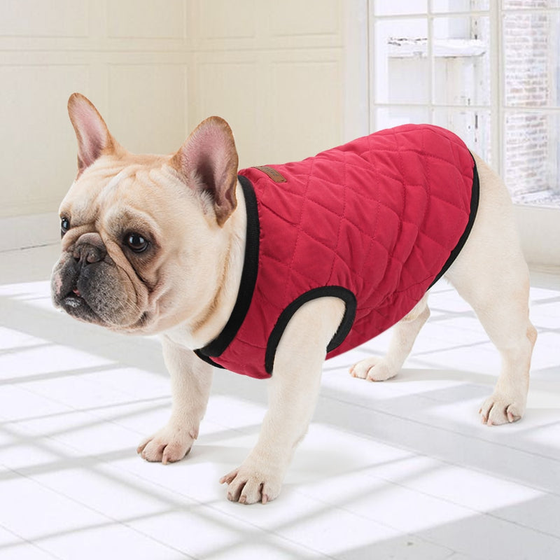Jacket, Jacket, Sweater, Vest, Clothing, Shoes & Accessories, HappyDog, dogs