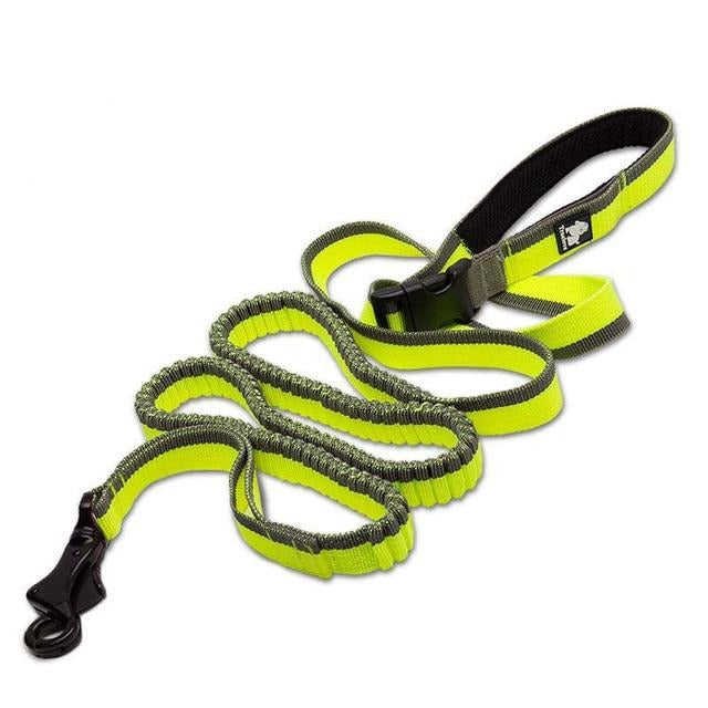 Bungee Leash, Hands Free, Hands Free Leash, Harness, Jogging, Leash, Running, Waistband Leash, Collars, Harnesses & Leashes, HappyDog, dogs