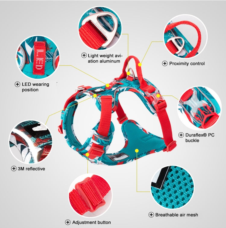 Colour Burst Harness, Adjust, Cool, Harness, Neon, Reflective, Collars, Harnesses & Leashes, HappyDog, dogs