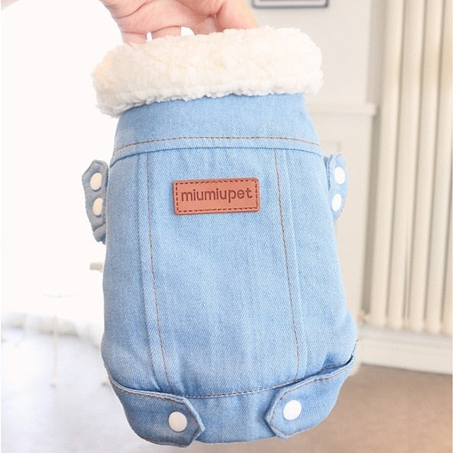 Denim Jacket, Denim, Fall, Jacket, Jean Jacket, Spring, Clothing, Shoes & Accessories, HappyDog, dogs