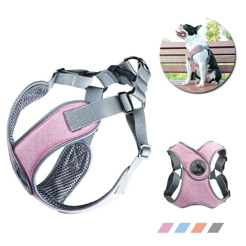 Active Harness, Adjustable, Harness, Vest, Collars, Harnesses & Leashes, HappyDog, dogs