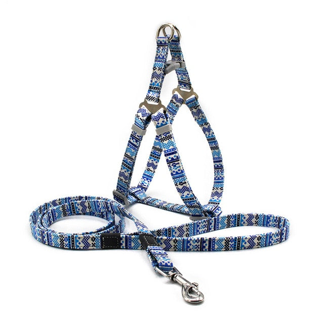 Funky Design Harness, Adjustable, Cool Colours, Harness, Leash, Set, Collars, Harnesses & Leashes, HappyDog, dogs
