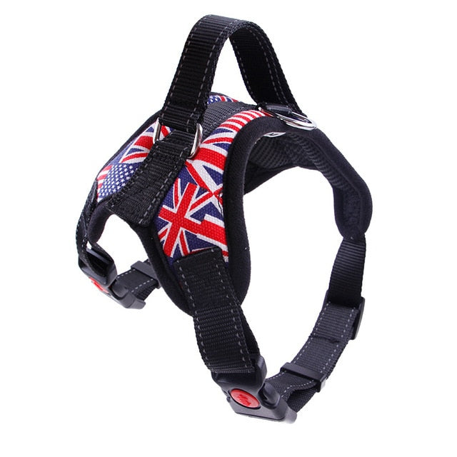 Durable Harness, Harness, Reflective, Collars, Harnesses & Leashes, HappyDog, dogs