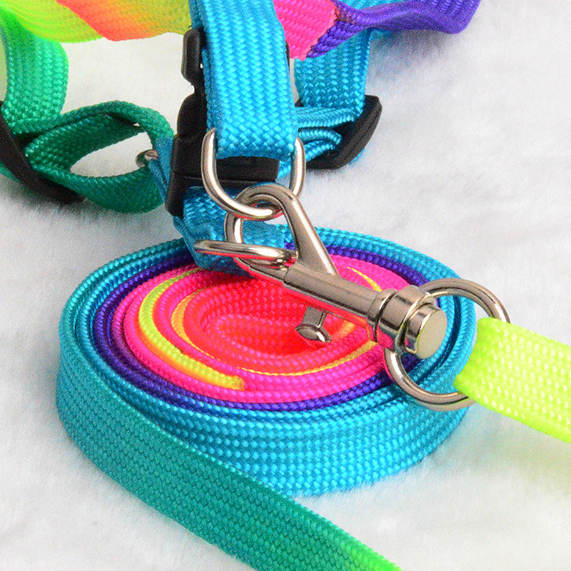 Colorful Rainbow Tie-Dye Collar Harness with Leash, Collar, Colours, Harness, Leash, Rainbow, Tie-Dye, Collars, Harnesses & Leashes, HappyDog, dogs