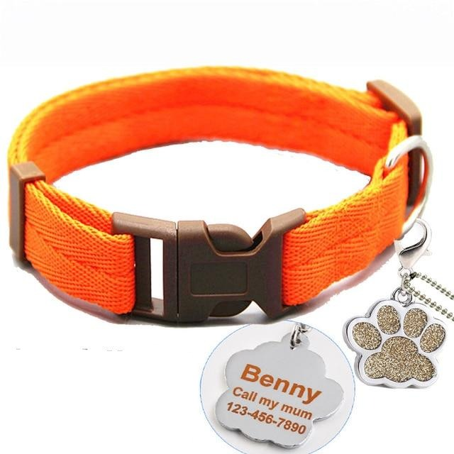 Buckle Collar with Custom ID Tag