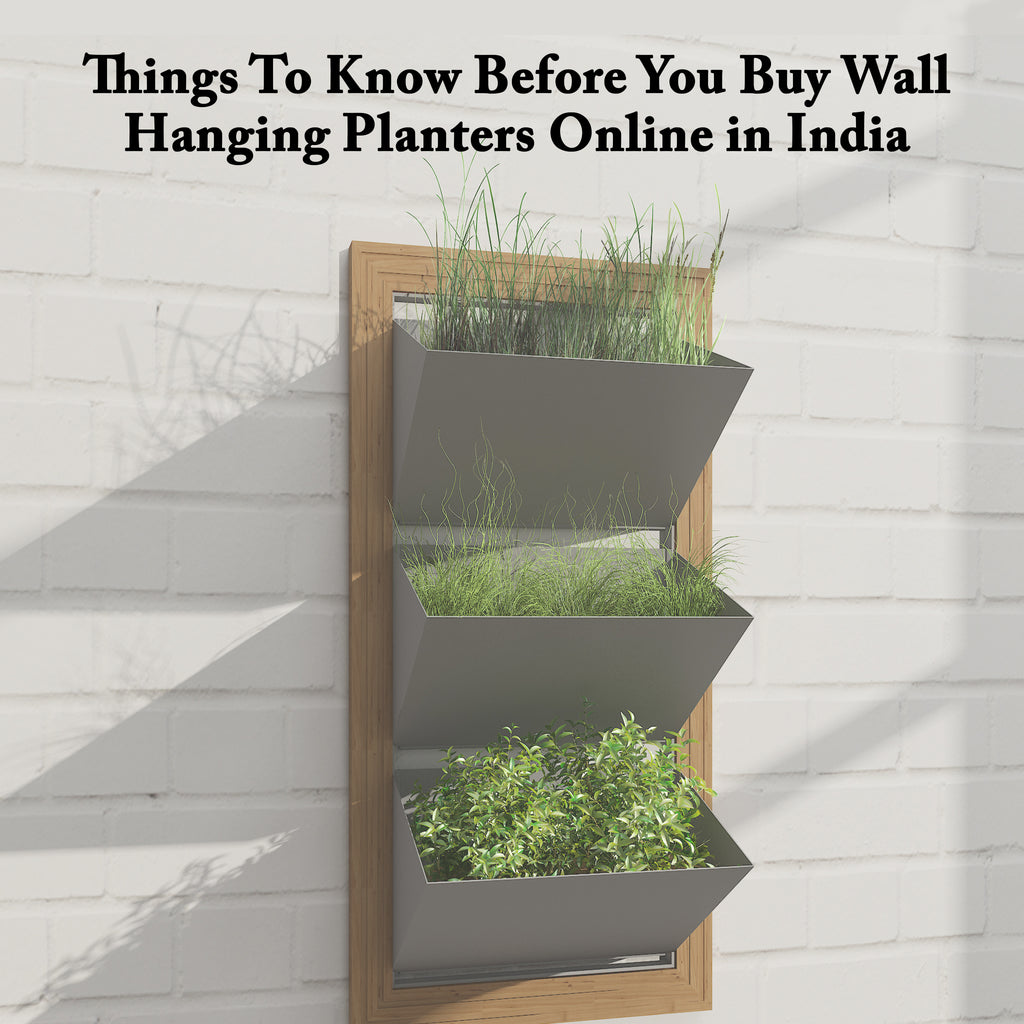 Things To Know Before You Buy Wall Hanging Planters Online in India | ReStory