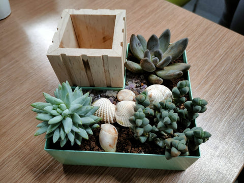 Organiser And Table Planter