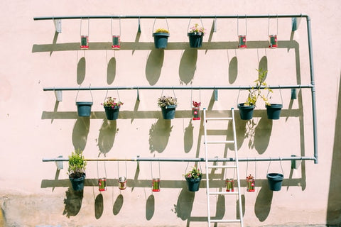 Ceiling Hanging Planters