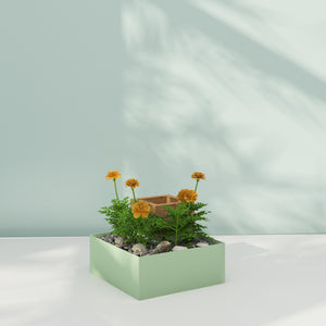 Grow kit - Shimon Multifunctional Table Planter