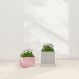 Saro-Wiwa Nesting Planters Set - C&D Family