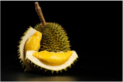 A picture containing a durian that has a large form filled with spiky thorns and yellow meat.