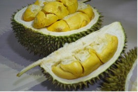 A picture containing the D101 durian cut in half