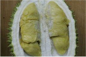 A picture containing the D1 durian cut in half