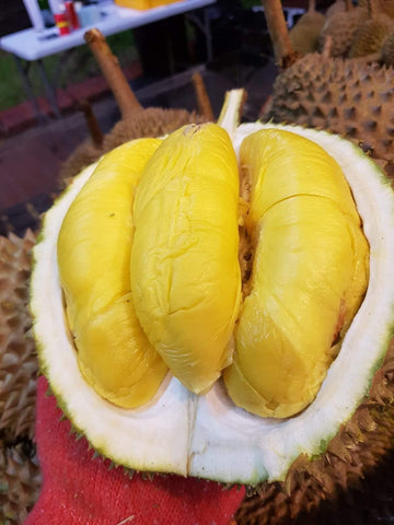 Durian Musang King in husk