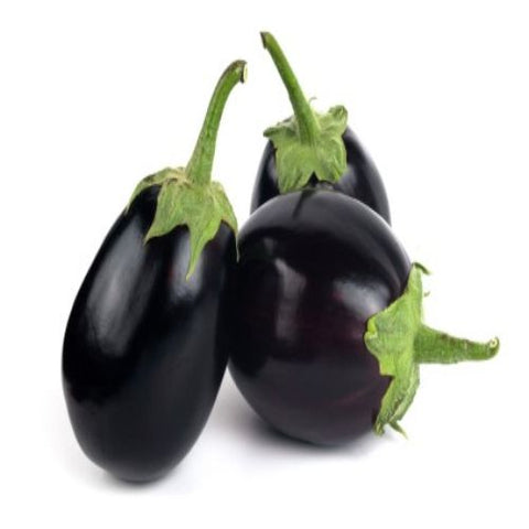 Brinjal / Began - Purple - Big Meal