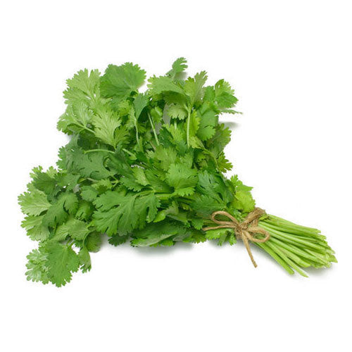 Coriander leaves / Kotmeer