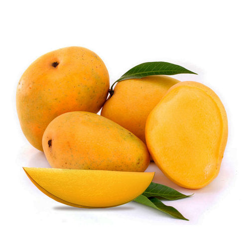 Kesar Mango - Big Meal