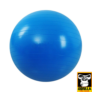 "24"" BLUE YOGA BALL"