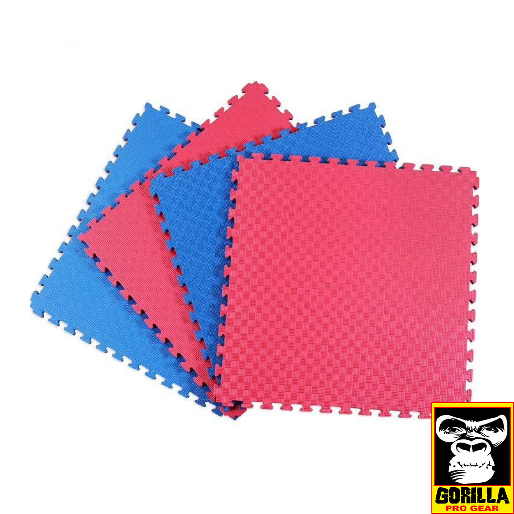 RED AND BLUE MARTIAL ARTS MATS