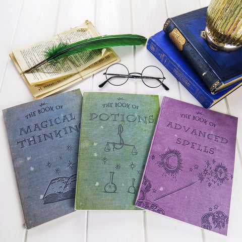 Magic Notebooks- For Young Wizards - Set of Three