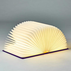 Book Cover Light / Lamp - Vintage Penguin Style