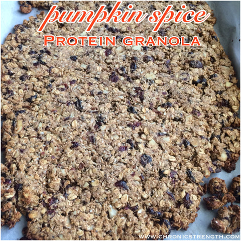 Low Fat Pumpkin Spice Protein Granola