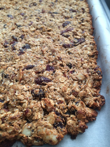 Low Fat Maple Cranberry Protein Granola