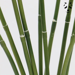 Artificial bamboo canes