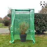 This greenhouse protects your potted bamboo in winter