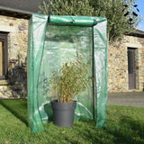 Protect potted bamboo in winter with a greenhouse