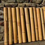You can order dry bamboo cane offcuts directly from our Pandam dry bamboo section sales site.
