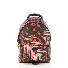 Louis Vuitton Palm Springs Backpack Limited Edition 3124601