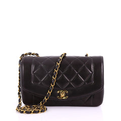Chanel Vintage Diana Flap Bag Quilted Lambskin Small 377411