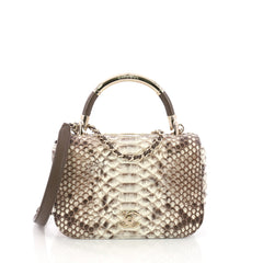 Chanel Model: Carry Chic Flap Bag Python Small Neutral 38274/1