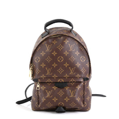 Louis Vuitton Palm Springs Backpack Monogram Canvas PM Brown 4511193