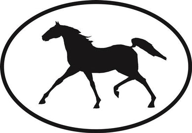 Tennessee Walking Horse decal from Oval Envy.  Great price for a durable vinyl decal.  We've got animals, beaches, dogs, cats and more!  Search our catalog for your next Euro Oval Decal.
