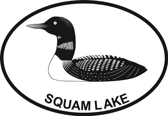 Squam Lake decal from Oval Envy.  Great price for a durable vinyl decal.  We've got animals, beaches, dogs, cats and more!  Search our catalog for your next Euro Oval Decal.